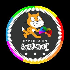Expert in Scratch